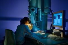 Invest Australia Electron Microscope- University of Qld